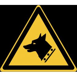 W013 : Danger, chien de garde